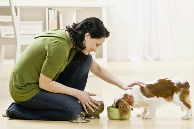 Proper Pet Care